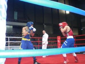 11-të boksierë kosovarë në turneun e Podgoricës